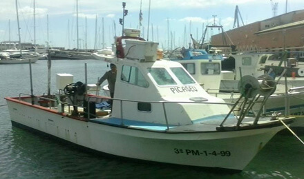 fishingtripmajorca.co.uk boat tours in Majorca with Picaseu