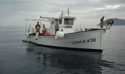 fishingtripmajorca.co.uk boat tours in Majorca with Cap Ferrutx
