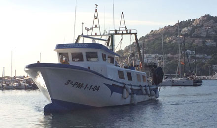 fishingtripmajorca.co.uk boat trips at Majorca with Blai