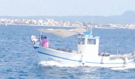 fishingtripmajorca.co.uk boat tours in Majorca with Hermanos Gonzalez